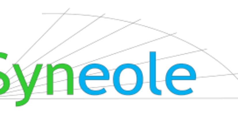 logo syneole